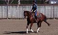 Ridingprinciples_1