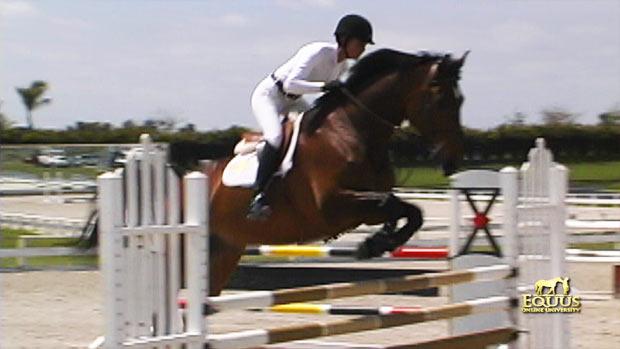 Simpson 4 bighorse