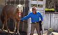 Equinevision_3